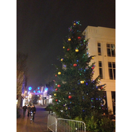 Bedford Town Centre Christmas Tree at night