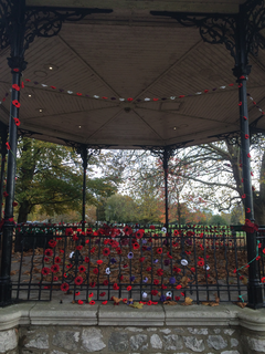 Poppies on the Mill Meadows Bandstand