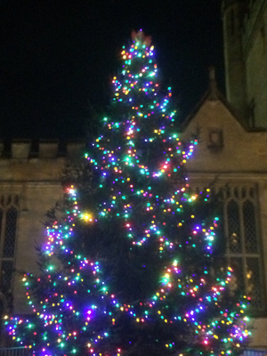 Bedford's Christmas Tree 2019